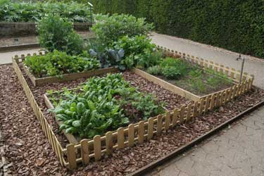 Images of Raised Protected Beds