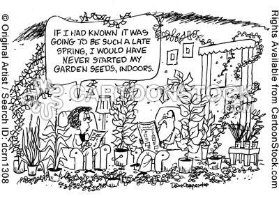 gardening-late-spring-spring_time-spring_time-spring_times-dcrn1308l